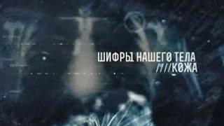 ШИФРЫ НАШЕГО ТЕЛА  КОЖА   документальный фильм
