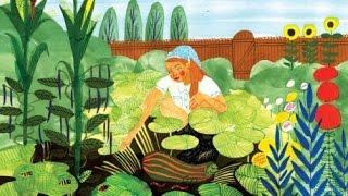 Био Земеделие с Филип от Тринога - част 2