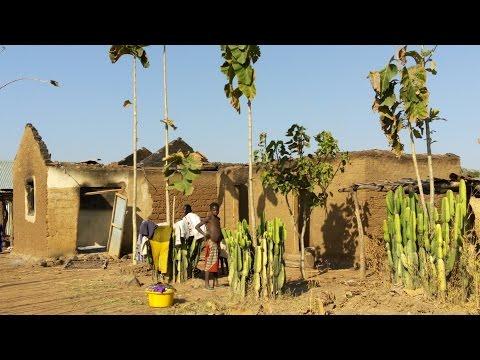 Terrorism in Nigeria: Boko Haram succeeded by rising Fulani militancy