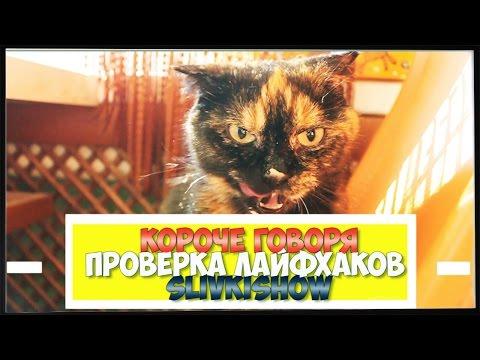 Аренда квартиры на сутки (посуточно) в Ярославле, квартиры