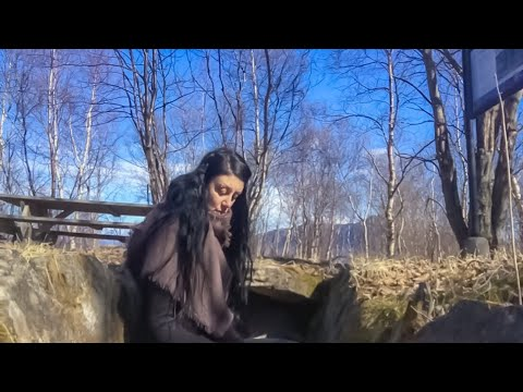 A chat from a Viking Grave, Sandhornøy, Bodø/Freyia The Arctic witch