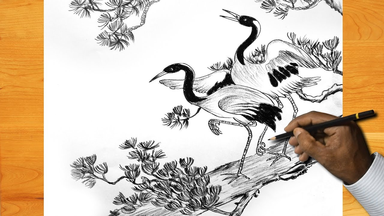 How to draw beautiful birds in the tree pencil sketch
