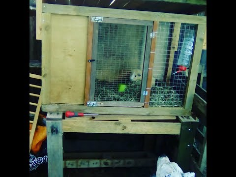 Homemade Wooden Guinea Pig Hutch: Made from Reclaimed wood (Scratch) !!!