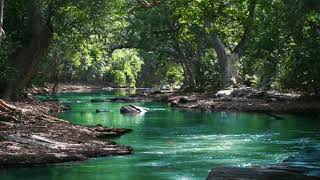 Relaxing Piano Music With Water fall sleeping studying spa