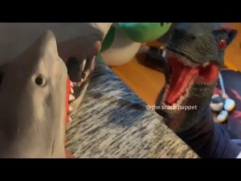 SHARK PUPPET FIGHTS DINOSAUR!!!!!