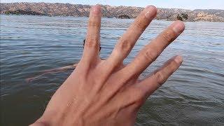 Prank!I lost My Wedding Ring!!!