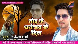 Dhananjay Sharma का सबसे हिट गम गाना (2019) तोड़ के धनंजय के दिल  || Bhojpuri New Sad Songs thumbnail