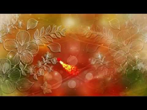 Free Love Motion Backgrounds Premium HD Video Wedding Background thumbnail
