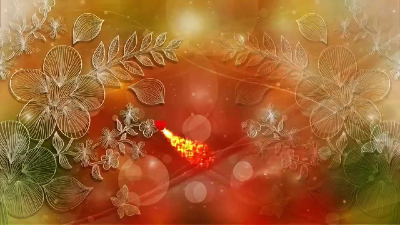 Ring Ceremony Hd Wallpaper Free Love Motion Backgrounds Premium Hd Video Wedding