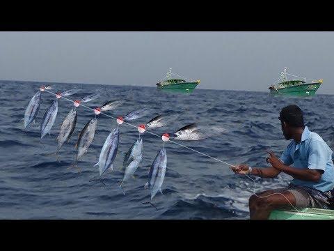 TUNA FISH CATCHING AT DEEP SEA