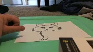 How to draw a cartoon husky