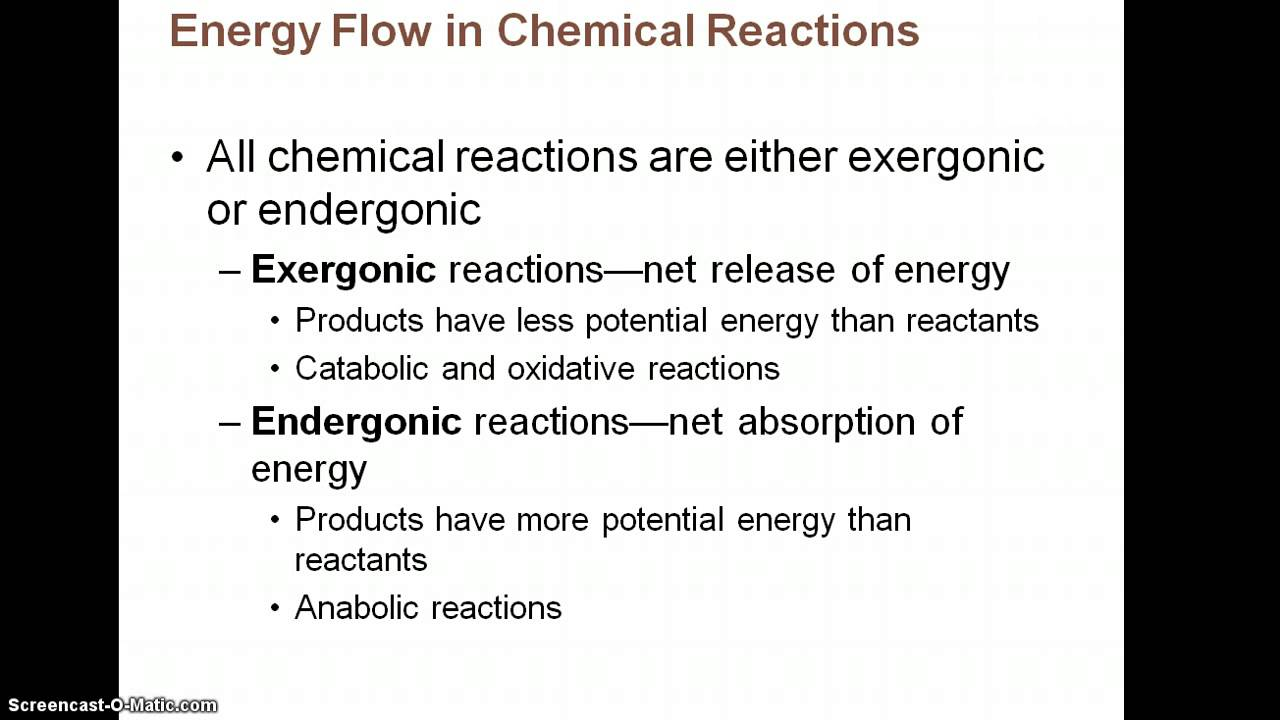 Chapter 2 Notes Part 3 Chemistry Comes Alive - YouTube