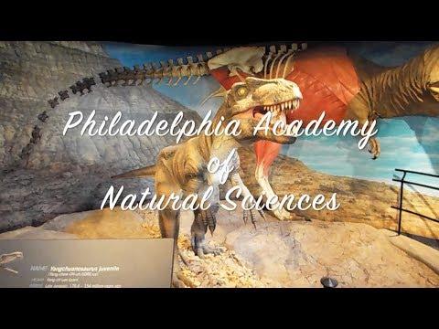 Philadelphia Academy of Natural Sciences