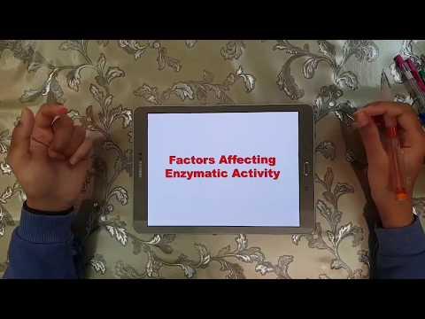 Bio2-2:Factors affecting enzymatic activity