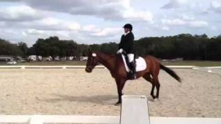 Rocking Horse Stables Schooling Sow 2/4/12