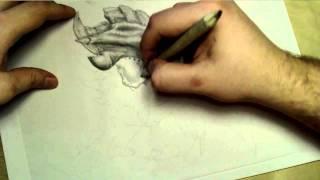 ♦ Zooc Draws - Hydralisk