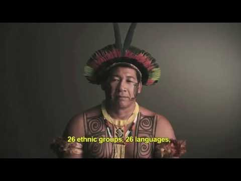 Origens Brasil® - English