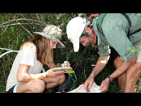 Thumbnail for FLC Voices: Cynthia Dott and Gary Gianniny: Animas Water Levels