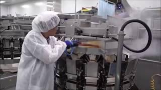 Steam Cleaning Snack Sorter Equipment - OPTIMA STEAMER