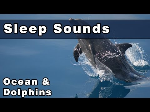 Soothing OCEAN SOUNDS with DOLPHIN Noises, 10 Hours, Dolphin Sounds, Sounds of The Ocean