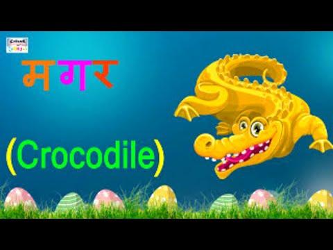 तीन वर्णों के शब्द | learn hindi three letter words