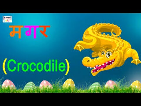 तीन  वर्णों के शब्द | Learn Hindi Three Letter Words For Beginners | Learning Grammar | Catrack Kids