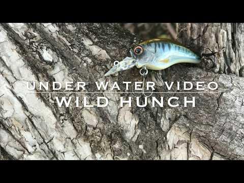 多彩に使えるリアルクランクベイトエバーグリーン/ワイルドハンチ水中映像