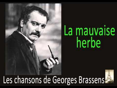 La Mauvaise Herbe Paroles Georges Brassens Greatsong
