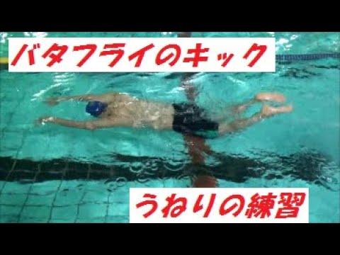 水泳上達!バタフライキックのコツ!!