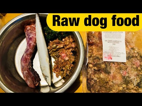 What a typical Raw Food Meal looks like for my English Springer Spaniel.