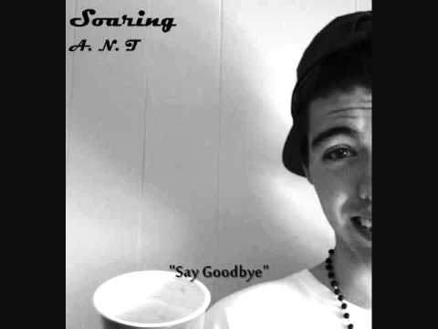 Say Goodbye (Download Link)