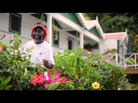 Pharrell Williams HAPPY from Saba Dutch Caribbean #HAPPYDAY