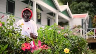 Pharrell Williams HAPPY from Saba Dutch Caribbean HAPPYDAY