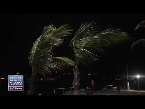 Windy Conditions At Albouy's Point In Hamilton, Jan 22 2020