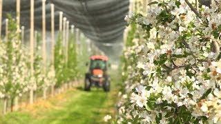Успешно земеделие - броят от 21.03.2018