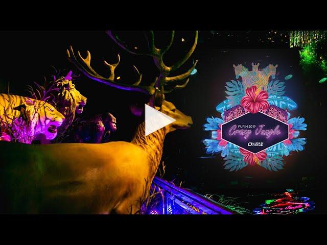 HM productions | Jungle party | MicroFocus