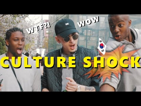 Culture Shock In Korea [Seoul hunters]