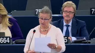 Oooo! Europosłanka PO przeciwko socjalistycznym pomysłom dot. pracowników delegowanych!
