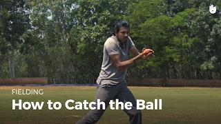 How to Catch tнe Ball | Cricket