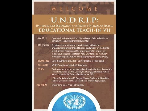 U.N. DECLARATION ON THE RIGHTS OF INDIGENOUS PEOPLES - PART THREE
