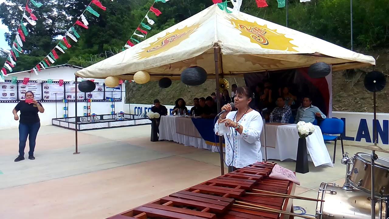 Download DG de CoBach visita 118 El Palmar