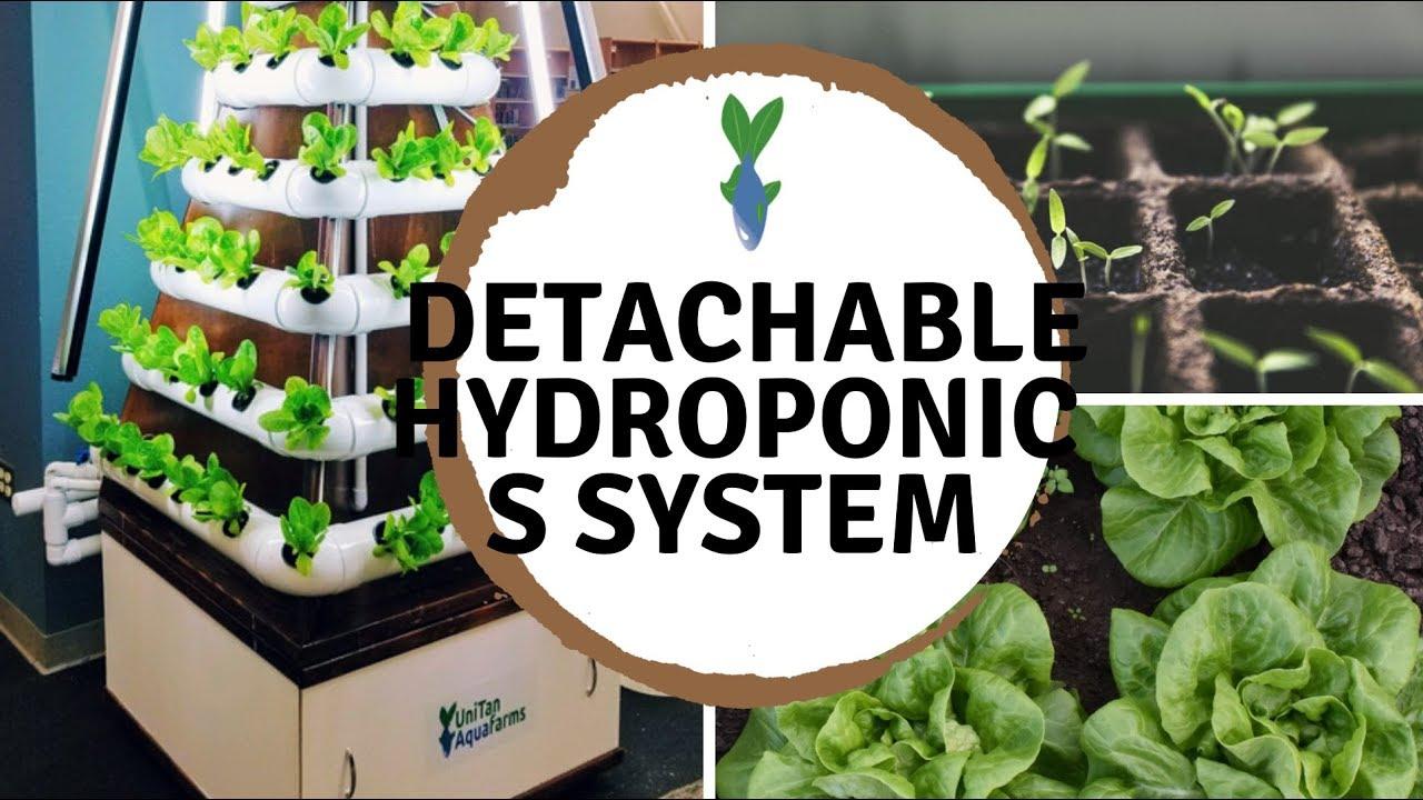 Detachable Hydroponics System - Unique Custom Pyramid Design