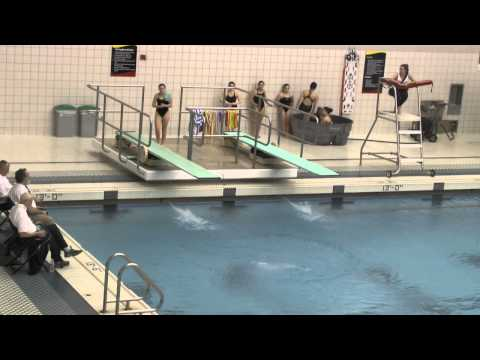 Maryland State Diving Meet, February 20