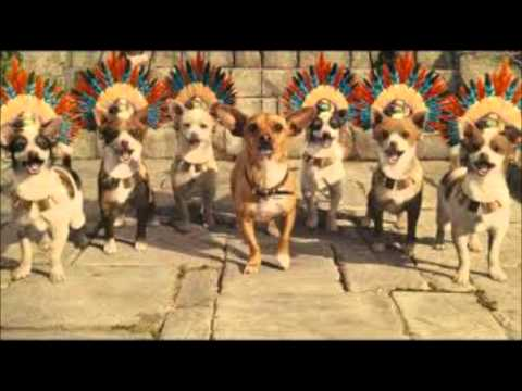 Beverly Hills Chihuahua Intro