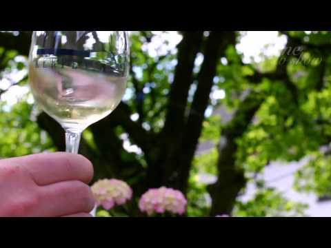 Weingut Kerpen – Mosel besök