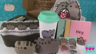 Pusheen Box Subscription Service Unboxing December 2015 | PSToyReviews thumbnail