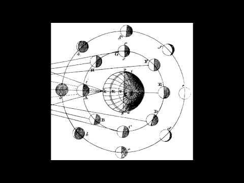 Adam Neely - Time//motion//wine FULL EP