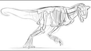 Carnotaurus: Skeletal System Drawing Demo