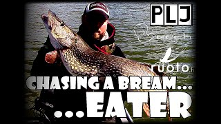 PLJ - Chasing a Bream...Eater ᴴᴰ