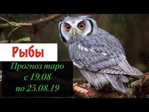 Рыбы гороскоп на неделю с 19.08 по 25.08.19 _ Таро прогноз